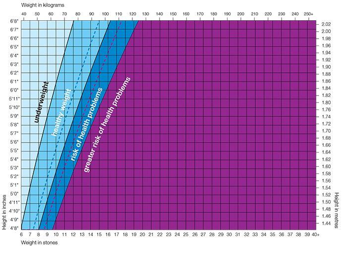 niatsiin b3 kaalulangus clen fat burner arvustused
